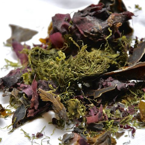 6proteins-seaweed